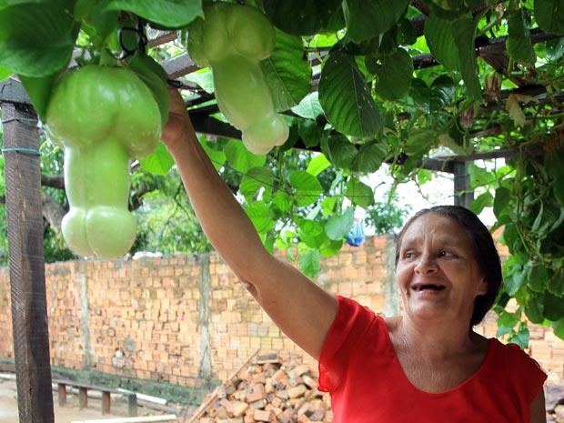 frutodoprazer